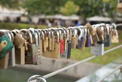 Blocages d'amour sur la frontière de sécurité Photographie stock libre de droits