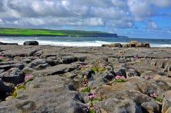 Bloccaggio della natura in ad ovest dell'Irlanda Immagine Stock Libera da Diritti