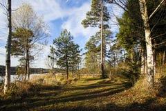 Bloccaggio di HDR di un lago in Baviera in autunno Immagini Stock Libere da Diritti