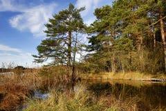 Bloccaggio di HDR di un lago in Baviera in autunno Immagine Stock