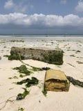 Blocchetti del cemento sulle spiagge di Zanzibar Fotografie Stock Libere da Diritti