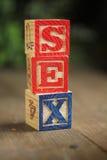 Blocchetti di legno del sesso Fotografie Stock Libere da Diritti