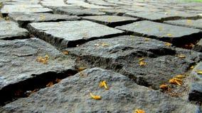 Blocchetti di pietra della strada privata Fotografia Stock