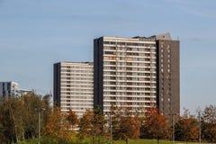 Blocchetti di torre sulla proprietà dei carpentieri, Londra orientale fotografie stock libere da diritti