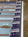 Blocchetti iniziare di nuotata Immagine Stock