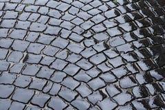 Blocchetto bagnato della pietra della pavimentazione Immagine Stock
