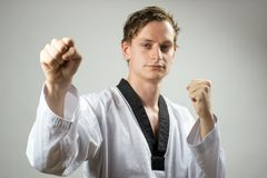 Blocchetto del doppio del Taekwondo Fotografie Stock Libere da Diritti