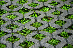 Blocchetto del mattone con erba. fotografie stock libere da diritti