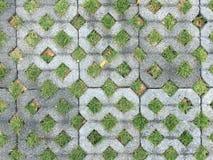 Blocchetto dell'erba Fotografie Stock Libere da Diritti