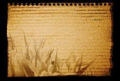 Blocchetto per appunti di vecchio stile con i fiori Fotografia Stock Libera da Diritti
