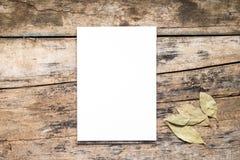 Blocchetto per schizzi bianco in bianco con la foglia di alloro su fondo di legno Immagini Stock Libere da Diritti