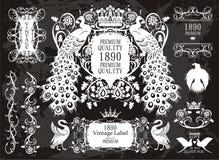 Blocchi per grafici del pavone ed insieme di elementi floreale royalty illustrazione gratis