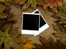 Blocchi per grafici del Polaroid sopra la priorità bassa di autunno immagine stock