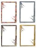 Blocchi per grafici floreali Immagine Stock