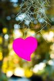 Blocco note in bianco o rosa appiccicoso delle note con luce solare del bokeh all'aperto immagini stock libere da diritti