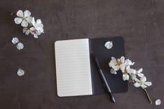 Blocco note con la penna e fiori della mandorla su un fondo scuro Co Fotografia Stock