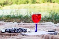 Blocco note e frutti, succo e vino, all'aperto nell'erba del lago park di estate fotografia stock libera da diritti