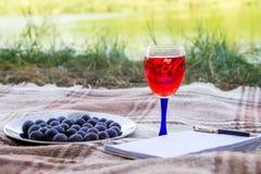 Blocco note e frutti, succo e vino, all'aperto nell'erba del lago park di estate immagine stock libera da diritti
