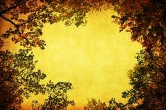 Blocco per grafici antico di stile delle parti superiori dell'albero fotografia stock libera da diritti