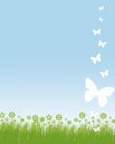Blocco per grafici dei fiori e delle farfalle Immagine Stock Libera da Diritti