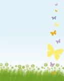 Blocco per grafici dei fiori e delle farfalle Fotografia Stock Libera da Diritti