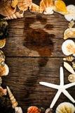 Blocco per grafici dei Seashells Fotografia Stock Libera da Diritti