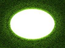 Blocco per grafici del cerchio dell'erba Fotografie Stock Libere da Diritti