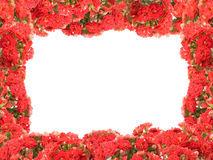 Blocco per grafici del fiore Fotografia Stock