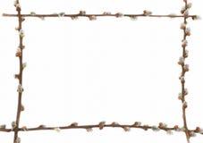 Blocco per grafici del salice di Pasqua immagini stock libere da diritti