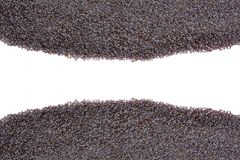 Blocco per grafici del seme di papavero Immagine Stock Libera da Diritti