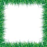 Blocco per grafici dell'erba royalty illustrazione gratis