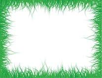 Blocco per grafici dell'erba verde Fotografie Stock Libere da Diritti