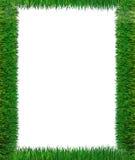 Blocco per grafici dell'erba verde Fotografia Stock Libera da Diritti