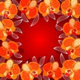 Blocco per grafici dell'orchidea Fotografia Stock Libera da Diritti