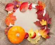 Blocco per grafici della foto di autunno Fotografia Stock Libera da Diritti