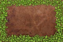 Blocco per grafici della pianta verde Fotografie Stock Libere da Diritti