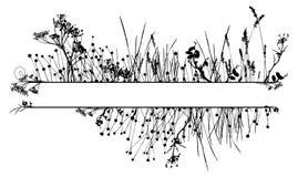 Blocco per grafici della siluetta dell'erba Immagine Stock