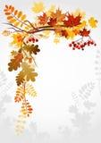 Blocco per grafici di autunno Immagine Stock Libera da Diritti