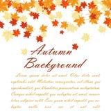 Blocco per grafici di autunno Fotografia Stock