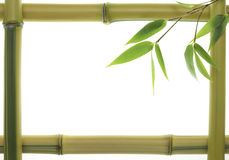 Blocco per grafici di bambù giallo Fotografie Stock