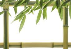 Blocco per grafici di bambù giallo Fotografia Stock