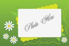 Blocco per grafici di estate con la camomilla Fotografia Stock Libera da Diritti