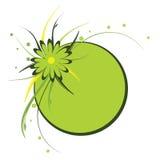 Blocco per grafici floreale, cerchio, verde Fotografie Stock