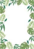 Blocco per grafici floreale di vettore Struttura floreale con le foglie tropicali Blocco per grafici floreale verde illustrazione vettoriale