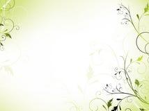 Blocco per grafici floreale in verde chiaro Fotografia Stock Libera da Diritti