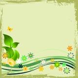 Blocco per grafici floreale verde di Grunge Fotografie Stock