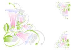 Blocco per grafici floreale, vettore dei cdr Fotografie Stock