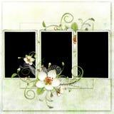 Blocco per grafici fresco della sorgente con i fiori di melo Immagini Stock