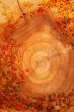 Blocco per grafici naturale - legno e branchlets Immagine Stock Libera da Diritti