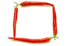 Blocco per grafici rosso dei peperoncini rossi isolato Fotografia Stock Libera da Diritti